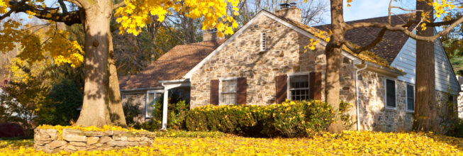 Fall Has Arrived! Here are the Best Tips for Fall Pest Prevention