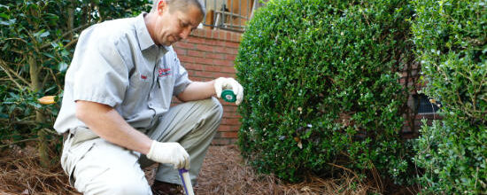 Mistakes Homeowners Make During Summer Months